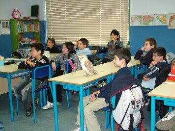scuole (2)